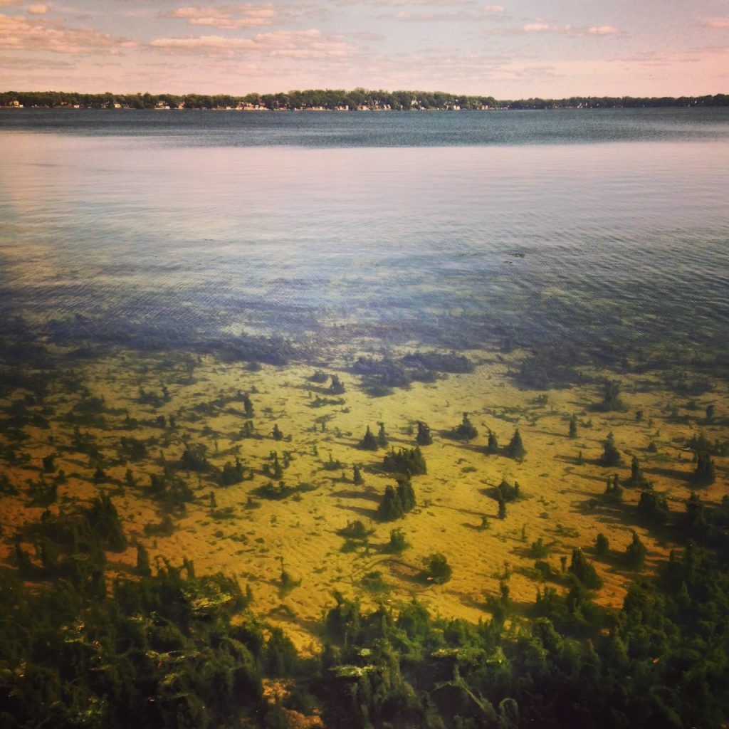 Lake Monona during clear water phase. Photo: Hilary Dugan