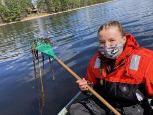 Erin Matula using a rake sampler to locate rice grains and rice seedlings in Wild Rice Lake.